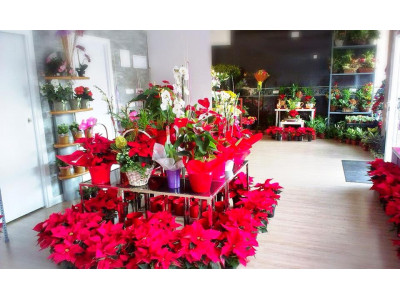 Florist in Leganés, place your order and we deliver it for free