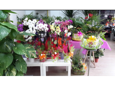 Florist with free shipping to Getafe